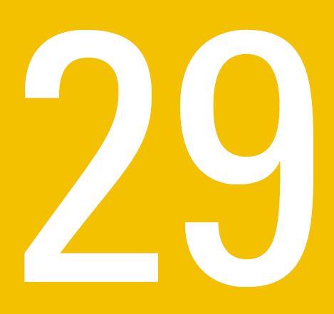 Línea 29